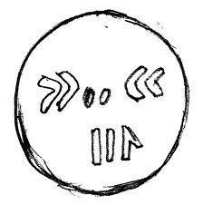 kromosom drosophila