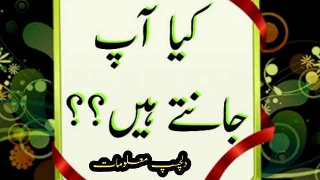 kya-aap-jante-hain-dilchasp-maloomat-urdu