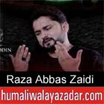 https://www.humaliwalayazadar.com/2013/06/syed-raza-abbas-zaidi-nohay-2006-2013.html