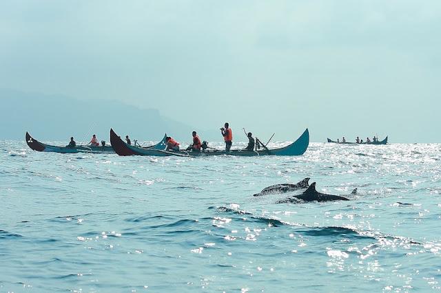[Image: Teluk-Kiluan-telusurindonesia.com_.jpg]