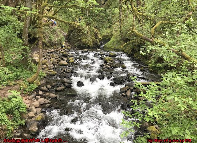 Bridal Veil creek Oregon