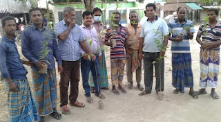 চৌগাছায় ২ নং পাশাপোল ইউনিয়ন যুবলীগের বৃক্ষ রোপণ