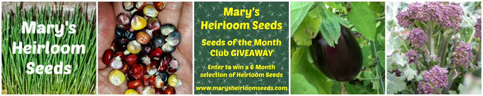 Organic Heirloom Seed from Mary's Heirloom Seeds - Enter the Giveaway | PreparednessMama