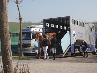 Italia, Horsexplore, riitta reissaa,