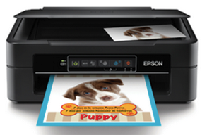 Epson XP-241 Driver Download - Windows, Mac - Support - Epson