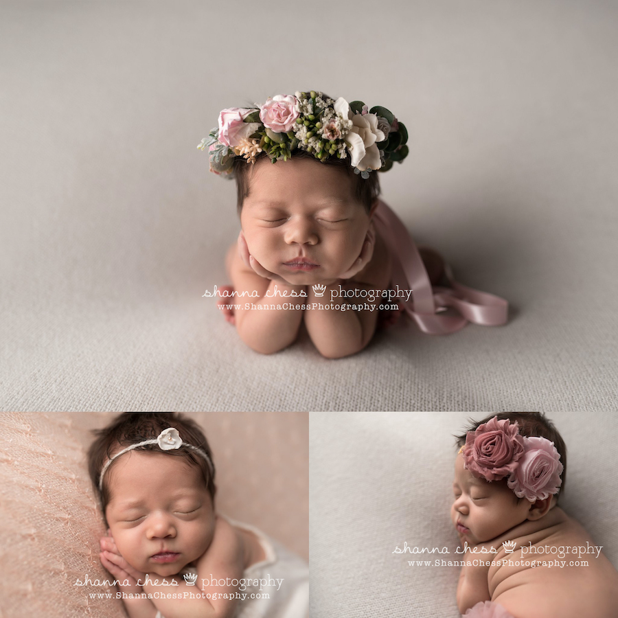 eugene oregon professional newborn photography