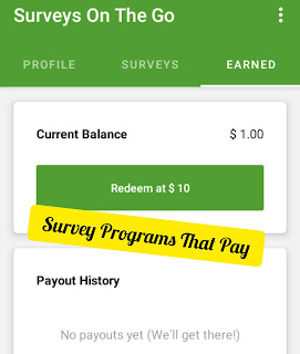 How to Make More Than N5000 on Survey On The Go Program