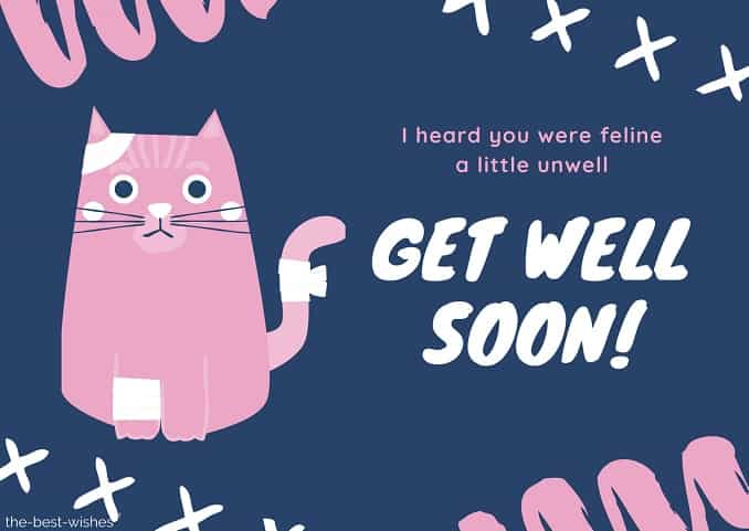 get well soon messages for cats