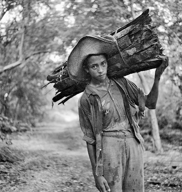 A young man carrying bayog bark along the Talisay-Tagaytay trail, 1934.