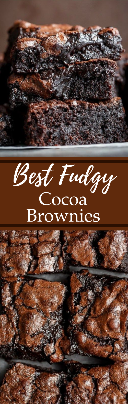 Best Fudgy Cocoa Brownies #desserts #chocolate