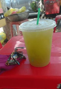 Trùn quế Ea Tam, BMT