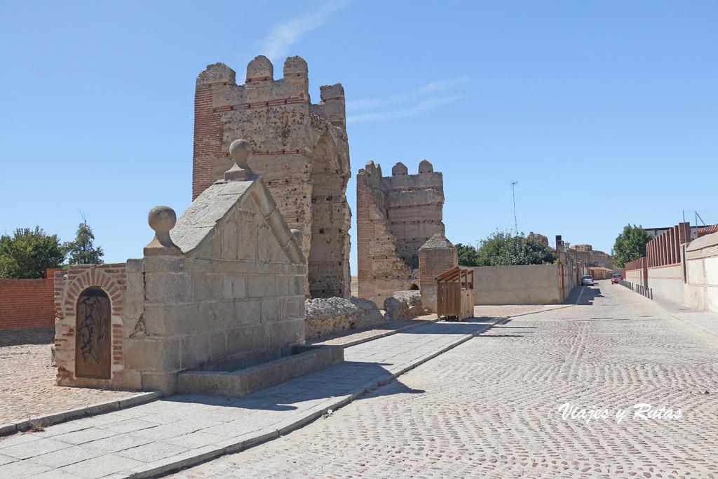 Torres y fuente de Madrigal de las Altas Torres
