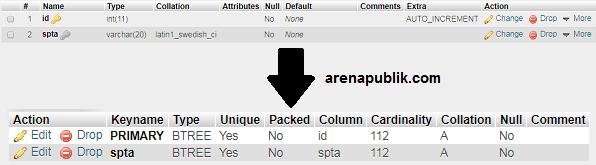 Mencegah Duplikat Data Dengan phpMyAdmin