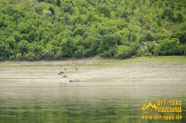 Tikvesh Lake, Macedonia