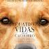 QUATRO VIDAS DE UM CACHORRO | Filme com voz de Bradley Cooper ganha primeiro trailer e cartaz nacional