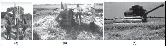 Gambar modernisasi pada proses mengolah padi