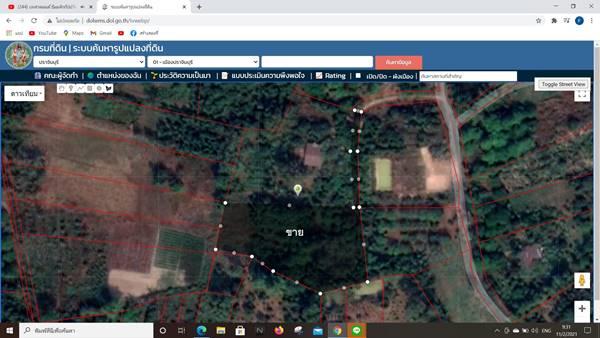 ขายที่สวนผลไม้ อำเภอเมืองปราจีนบุรี 3 ไร่ 1 งาน 86 ตารางวา