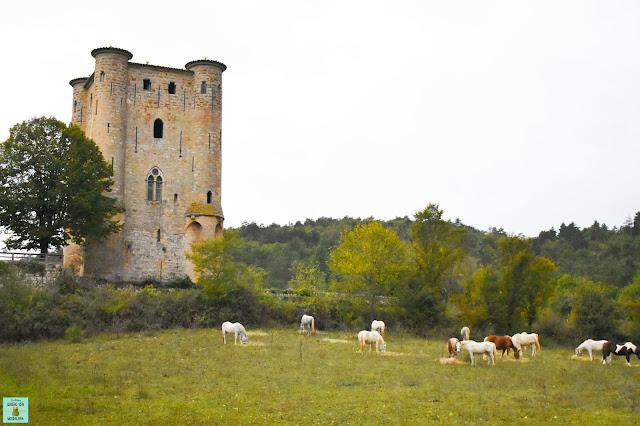 Castillo cátaro de Arques, Francia
