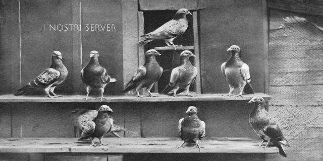 i-nostri-server-per-le-newsletter