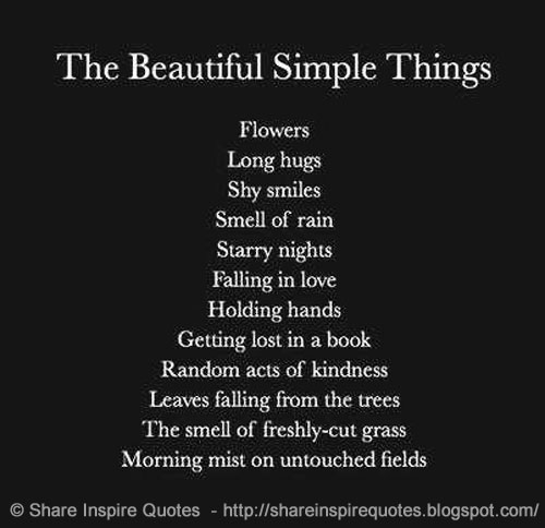 Simple Life Quotes Funny: The Beautiful Simple Things - In Life