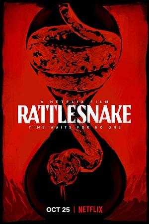 Rattlesnake (2019) 1GB Hindi Dual Audio 720p Web-DL