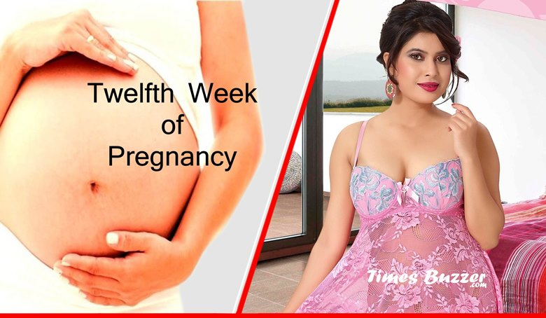 Twelfth Week of Pregnancy