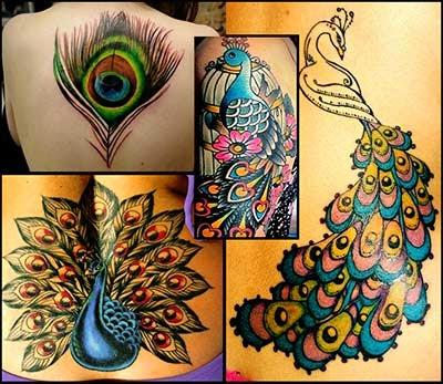 Tatuagem De Pavao Significado Fotos E Pena De Pavao