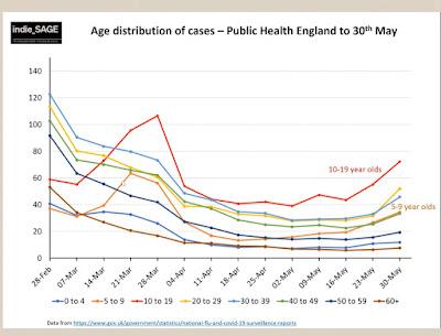 Age breakdown of cases UK indieSAGE briefing 040621