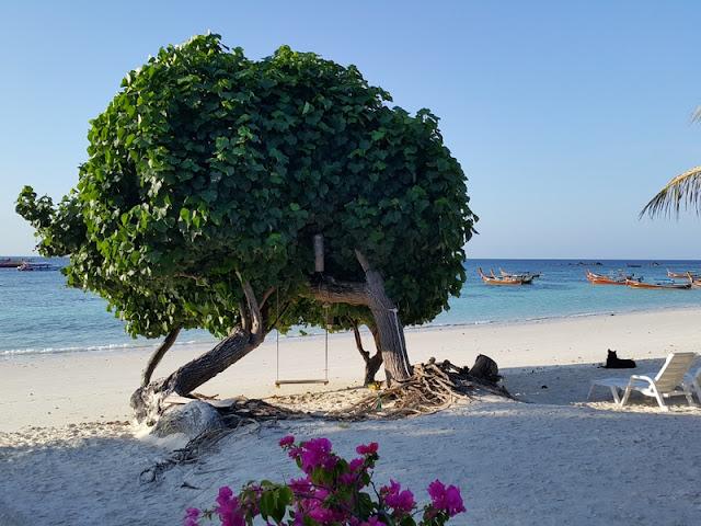 Bella Vista Beach Resort Koh Lipe