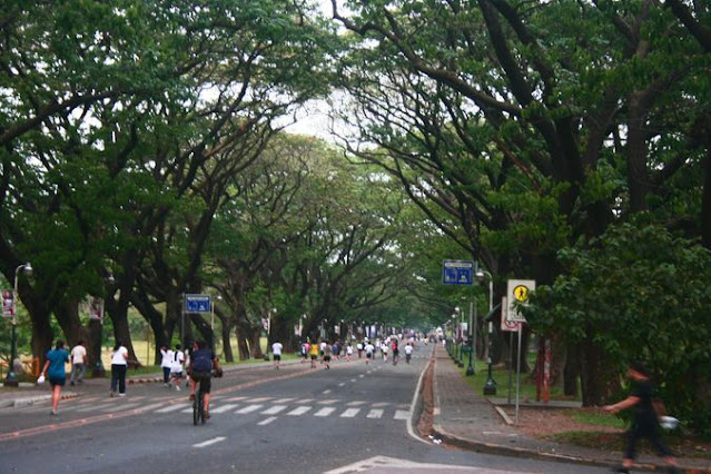 9 Top Reasons That Make UP Diliman A Family-Friendly Weekend Destination