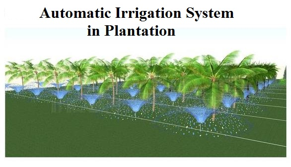 how to create an inexpensive drip irrigation system