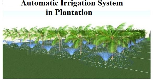 automated drip irrigation system thesis Micro sprinkler or drip irrigation systems is automated irrigation system irrigation system importance of irrigation.