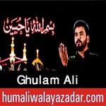 http://www.humaliwalayazadar.com/2017/09/ghulum-ali-nohay-2018.html
