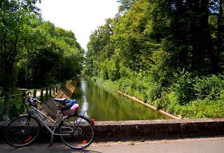 vélo au bord de la Wiese- Le Chameau Bleu