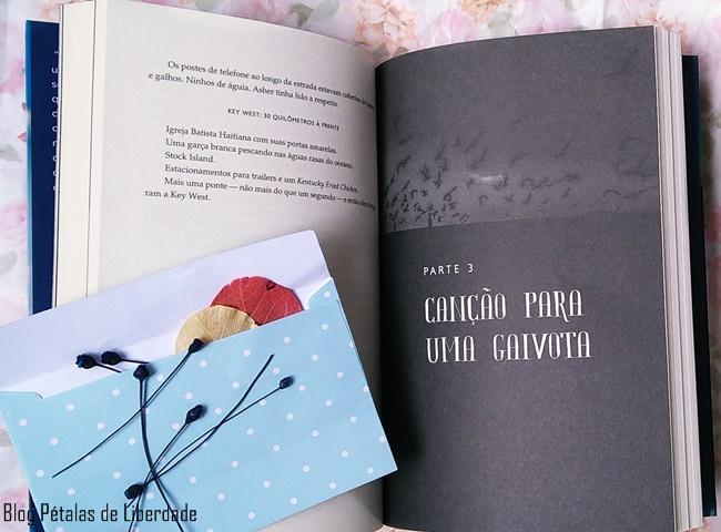 Resenha, livro, Rumo-ao-Sul, Silas-House, Faro-Editorial, blog-literario, trecho, southernmost, diagramacao