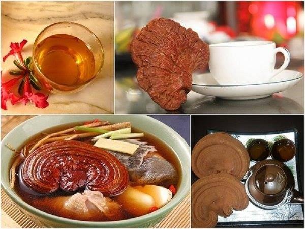 Sử dụng nấm linh chi đỏ tốt cho sức khỏe con người