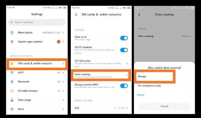 mobile data roaming