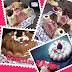 Tres Bundt Cake creativo de gelatina de fresas con nata y chocolate