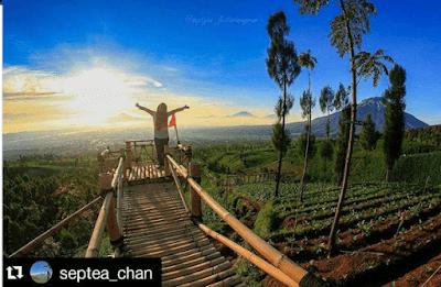 Wisata Temanggung Hits