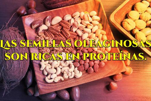 Cuáles son los alimentos con proteínas