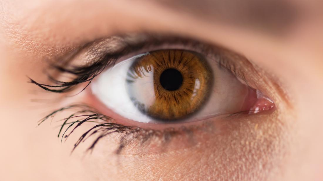 The 10 Best Foods That are Good for Your Eye Health