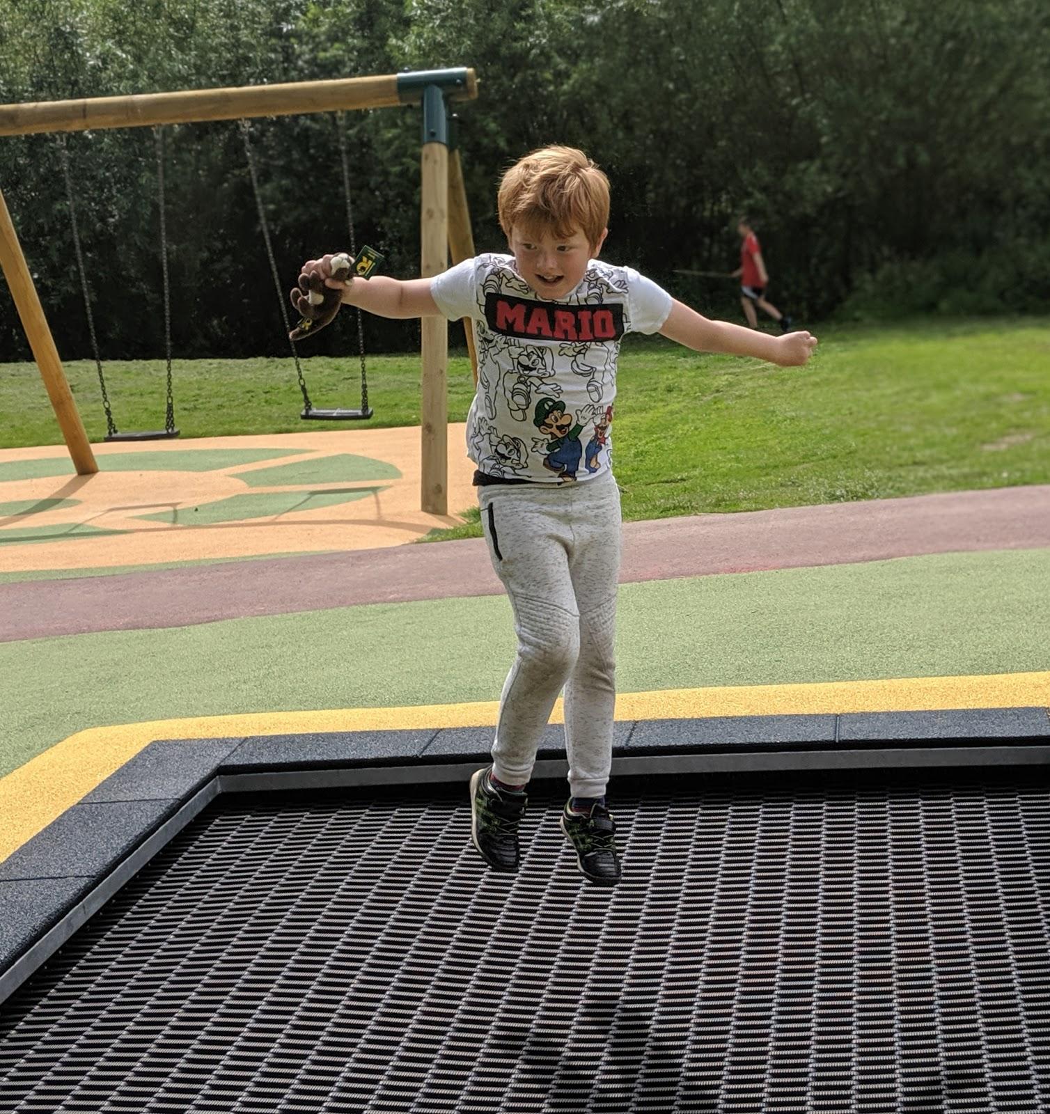 Harestanes Park, Jedburgh  - trampoline