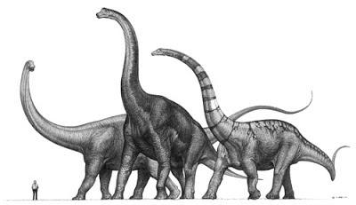 El impresionante Sauroposeidon