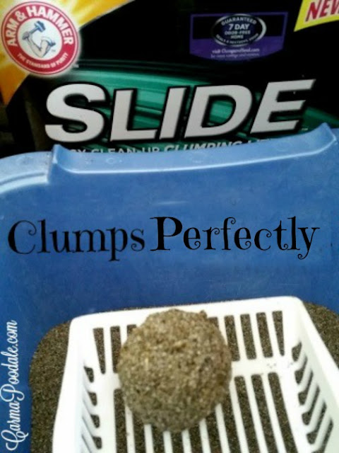 POOP in a ball clumped perfectly because of SLIDE cat litter