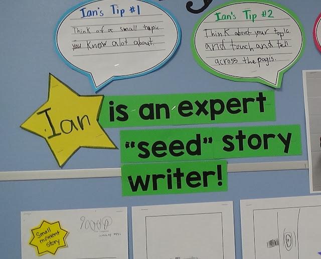 an expert seed story writer