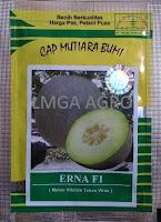 benih melon daging putih,melon erna f1,benih melon erna f1,lmga agro,cap mutiara bumi