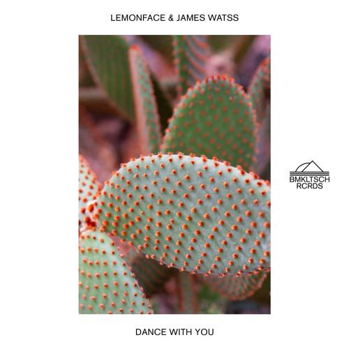 """Lemonface Unveils New Single """"Dance With You"""" ft. James Watss"""