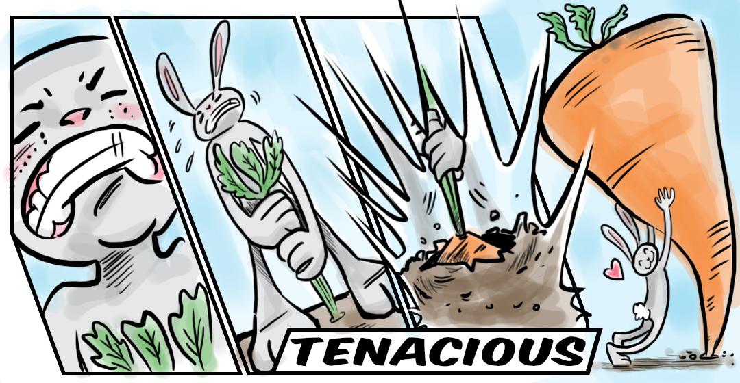 Tenacious' Vocab Video Contest ~ blogcoba