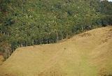 Domaines agricoles d'exploitation extensive