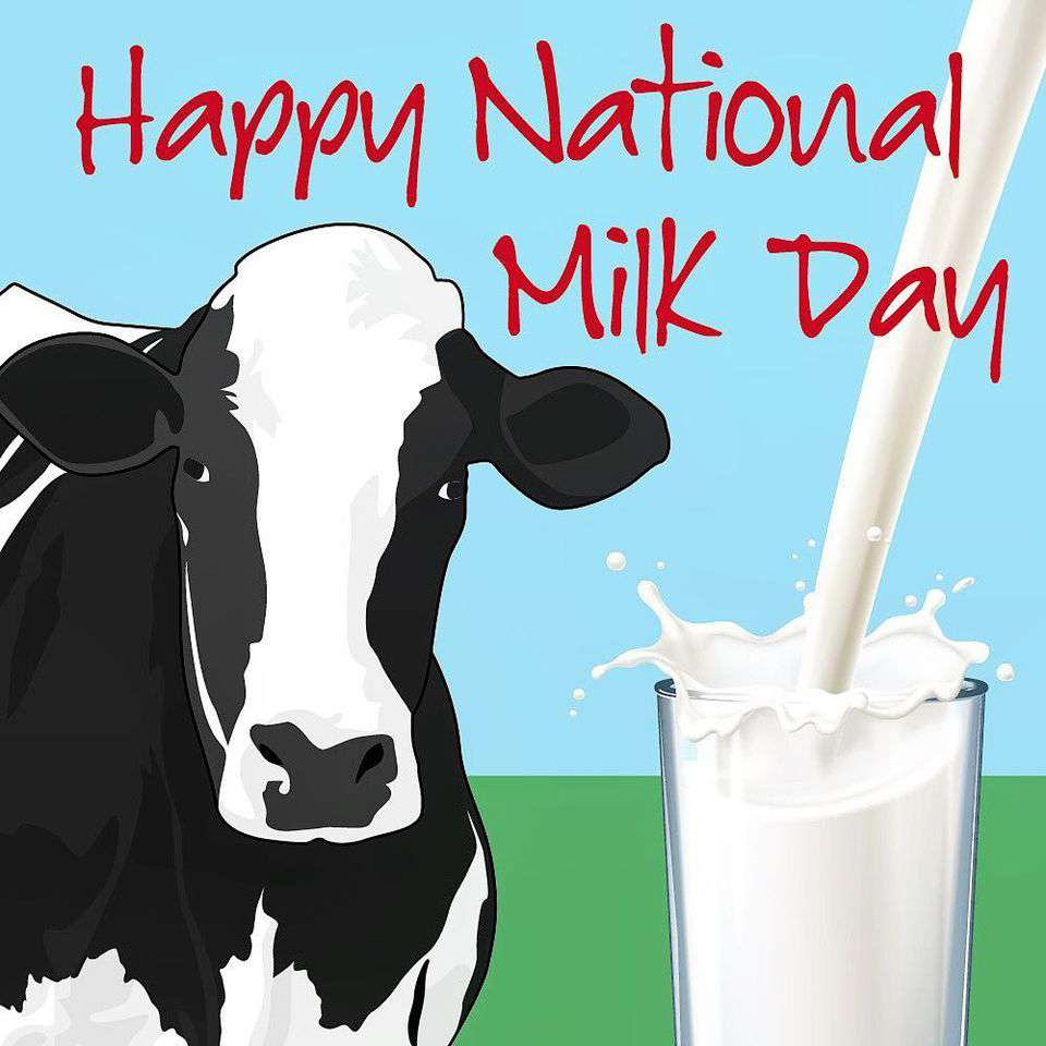 National Milk Day Wishes for Instagram